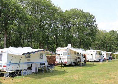 camping oldemarkt